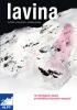 Lavina - praktická příručka
